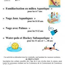 section aqualudique