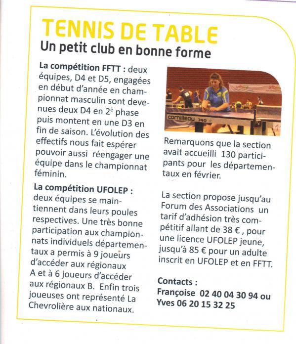 Tennis table article municipal